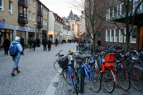 Picture is retrieved from http://www.resilientdesign.org/fundamentals-of-resilient-design-9-building-strong-communities/