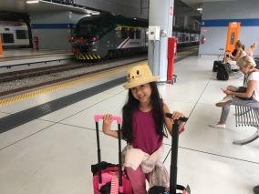 Malpensa Express connects Malpensa Airport and Milan City Centre